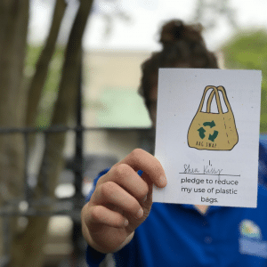 What to do about Plastic bags?