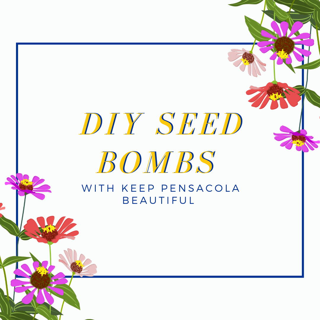 DIY Seed Bombs