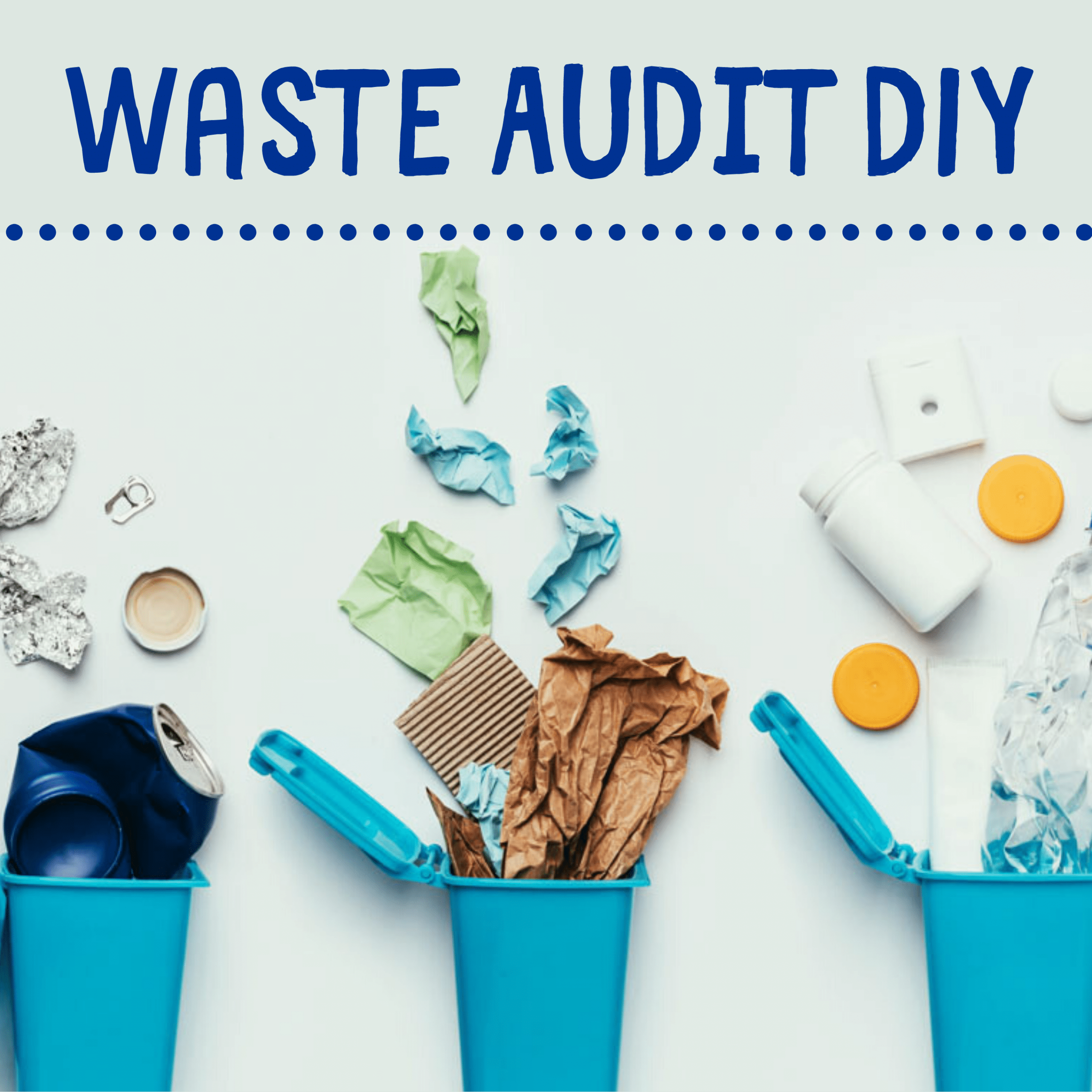 DIY Waste Audit