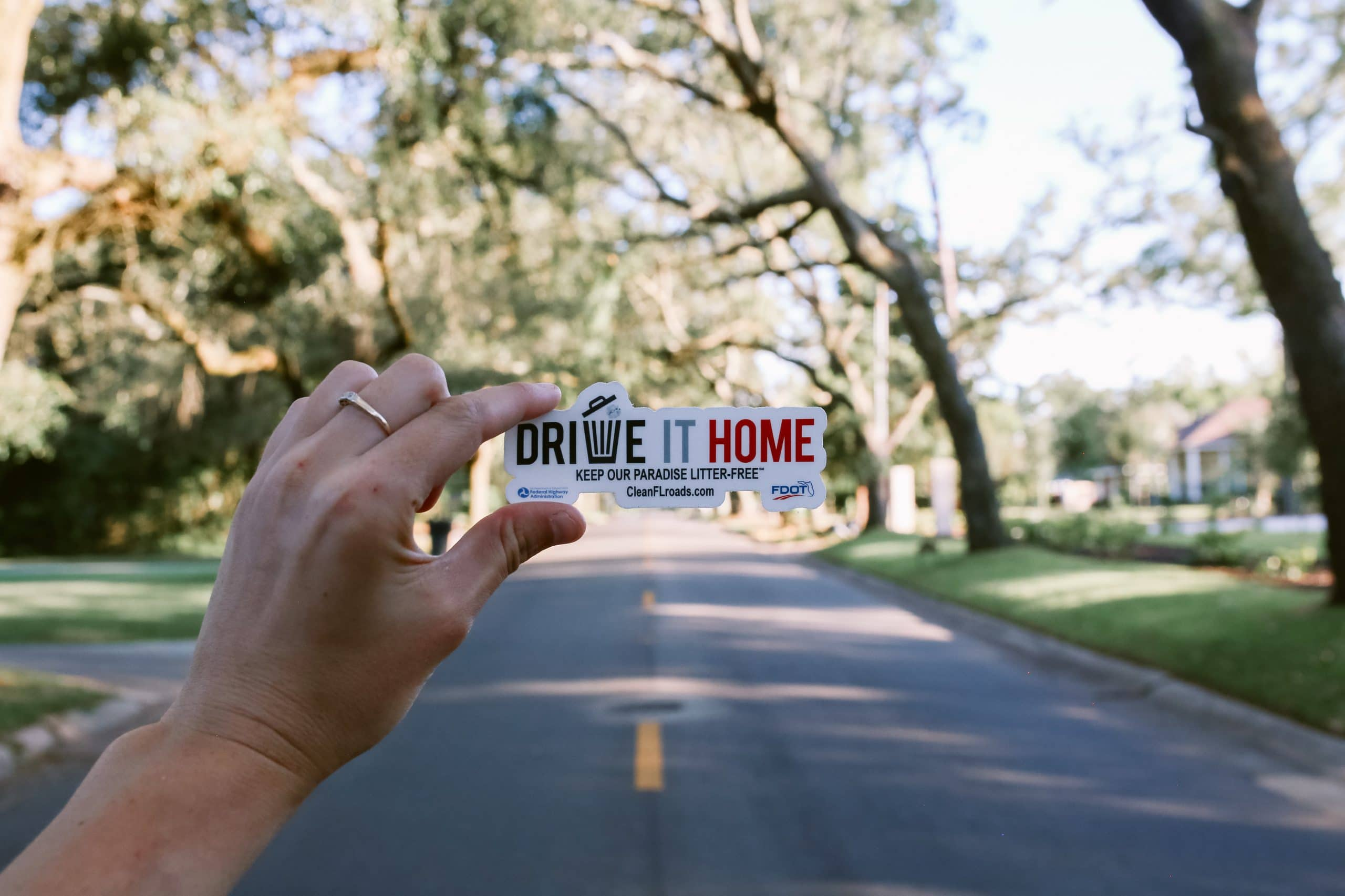 FDOT Drive It Home