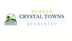Crystal Towns Board of Director